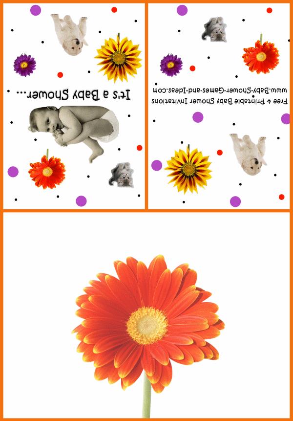 Baby Animal Shower Invitation 3c